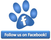 facebook-follow-paw-175